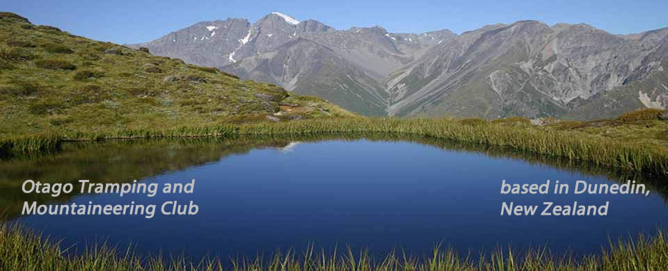 Tarn on Mt. Cook Range